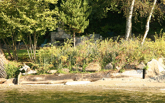 Soft Shoreline Restoration